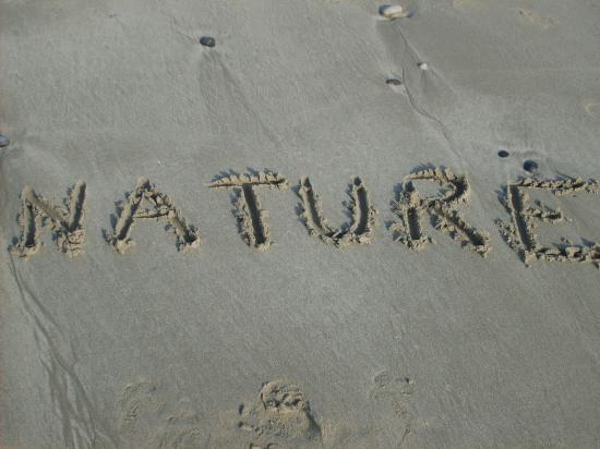 Centre Nature Beauté